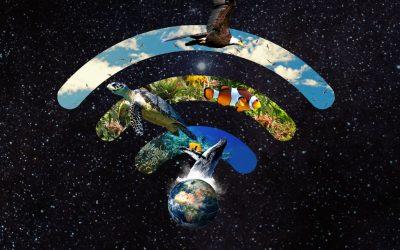 Bujalance se une a «La Hora del Planeta» 2021